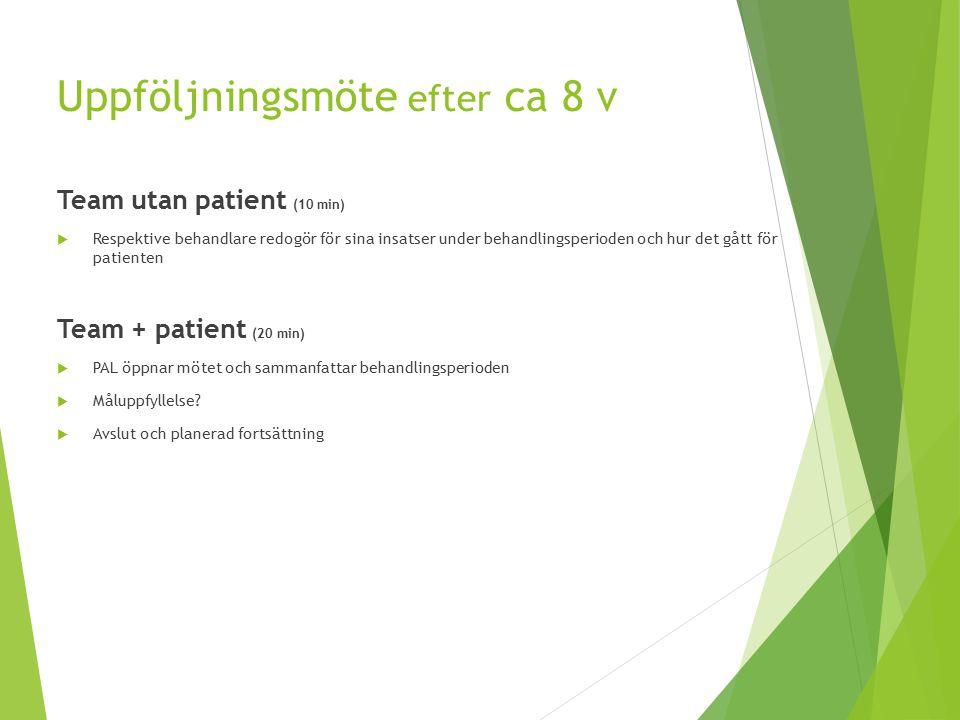 Uppföljningsmöte efter ca 8 v Team utan patient (10 min)  Respektive behandlare redogör för sina insatser under behandlingsperioden och hur det gått