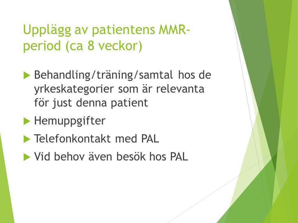 Upplägg av patientens MMR- period (ca 8 veckor)  Behandling/träning/samtal hos de yrkeskategorier som är relevanta för just denna patient  Hemuppgif