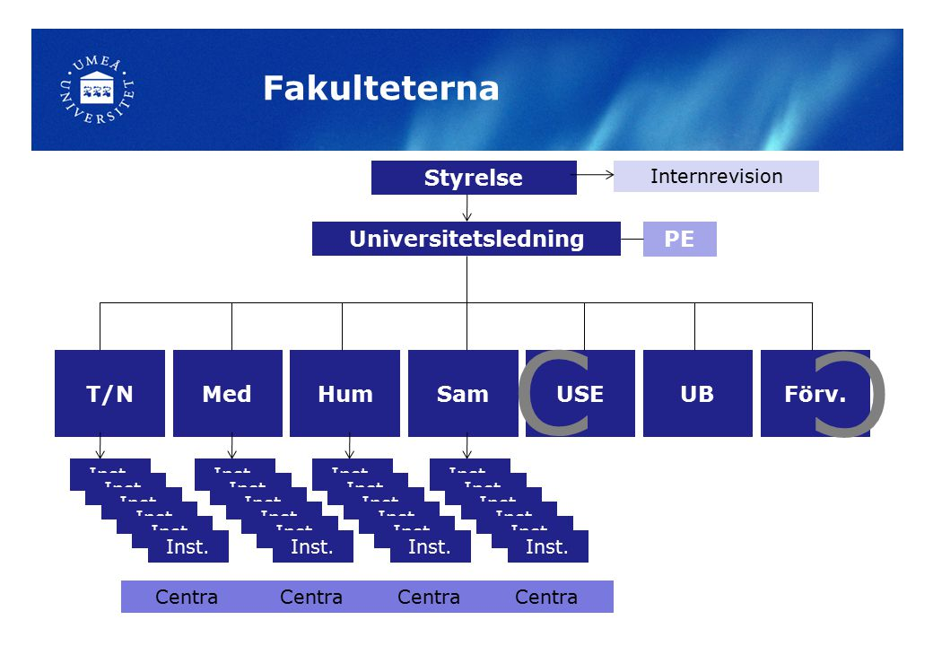 Institutionerna Parallellitet på institutionsnivå