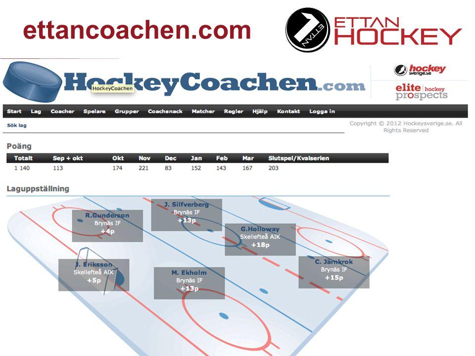 Eliteprospects.com  Profilering på ensklida spelare och laguppställningar  Profilering för nationella sponsorer  Möjlighet till försäljning till lokala annonsörer  Möjlighet till inbäddning av statistik på klubbarnas hemsidor  Delning av annonsintäkter mellan Newsme och Hockeyettan/klubbar