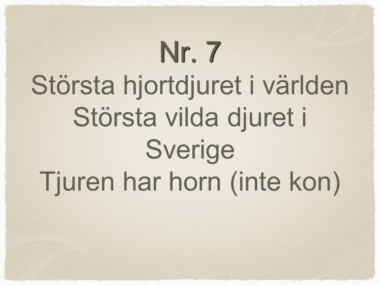 Nr. 7 Nr. 7 Största hjortdjuret i världen Största vilda djuret i Sverige Tjuren har horn (inte kon)