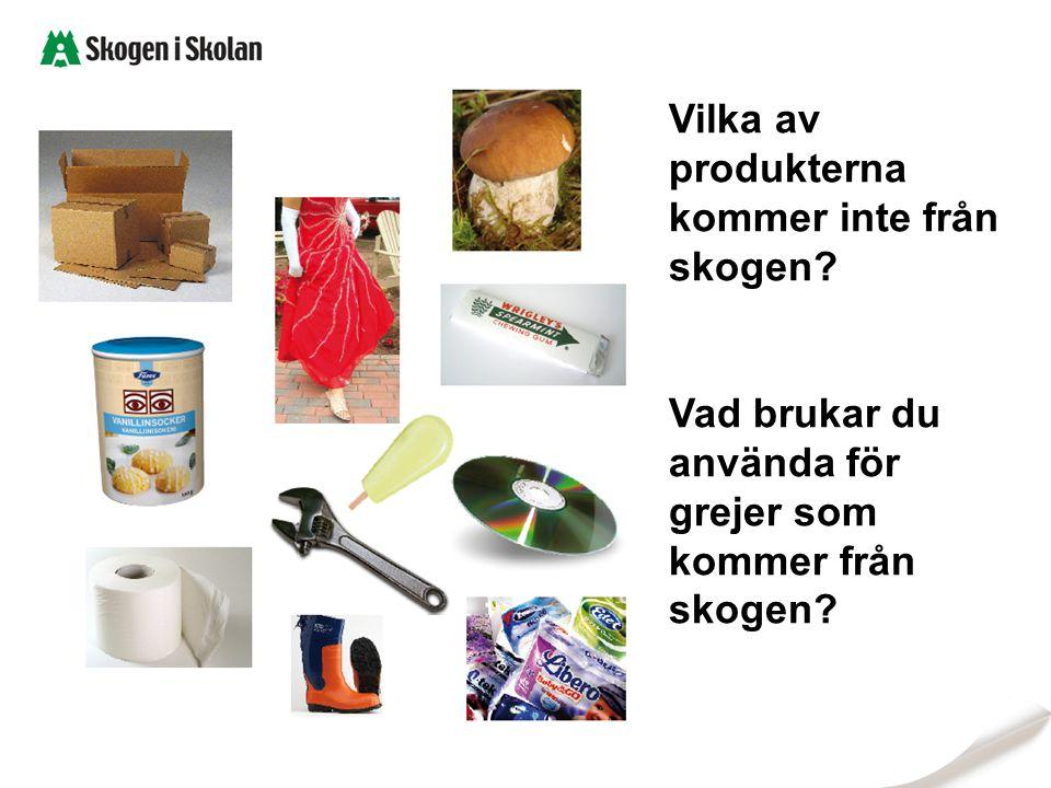 Vilka av produkterna kommer inte från skogen? Vad brukar du använda för grejer som kommer från skogen?