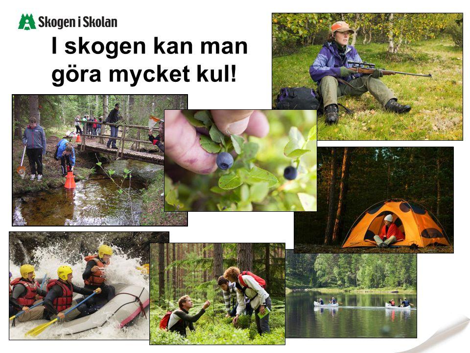 I skogen kan man göra mycket kul!