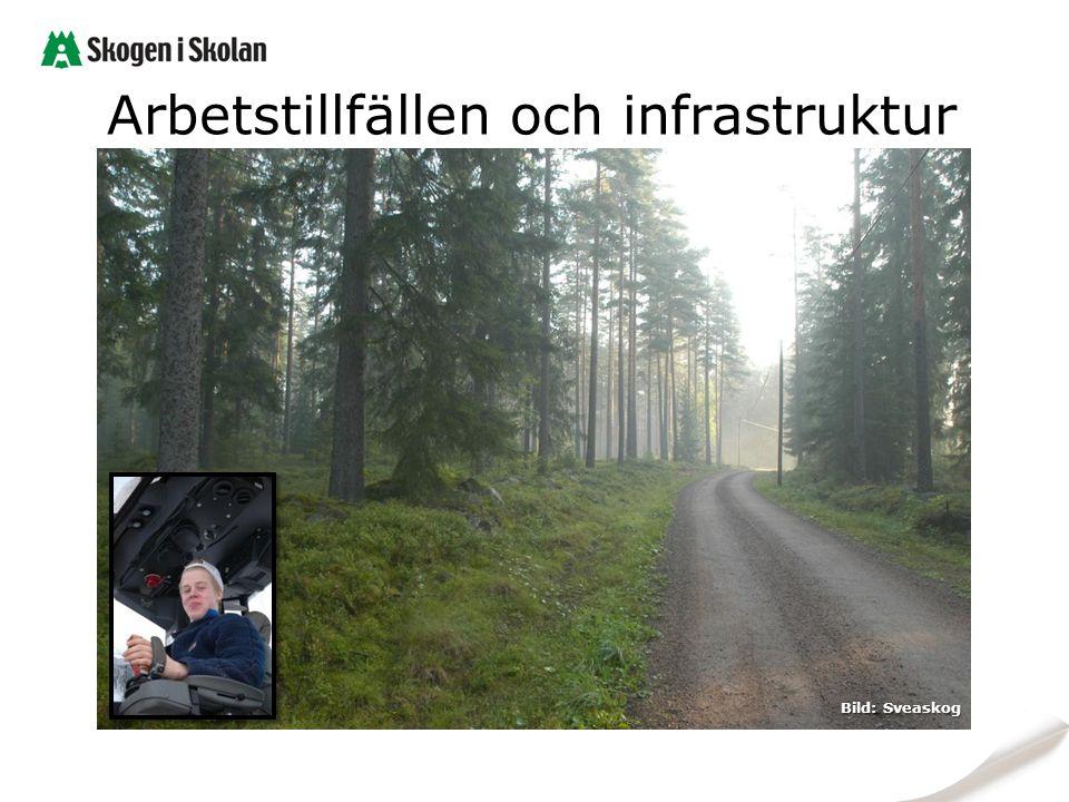 Arbetstillfällen och infrastruktur Bild: Sveaskog
