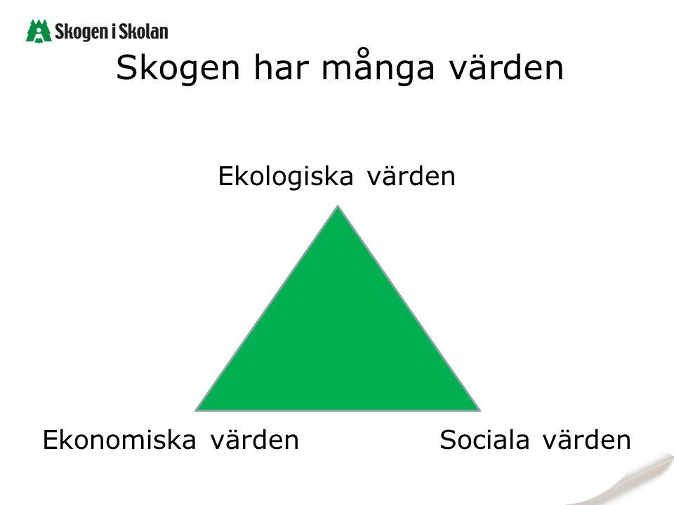 Skogen har många värden Ekologiska värden Ekonomiska värden Sociala värden