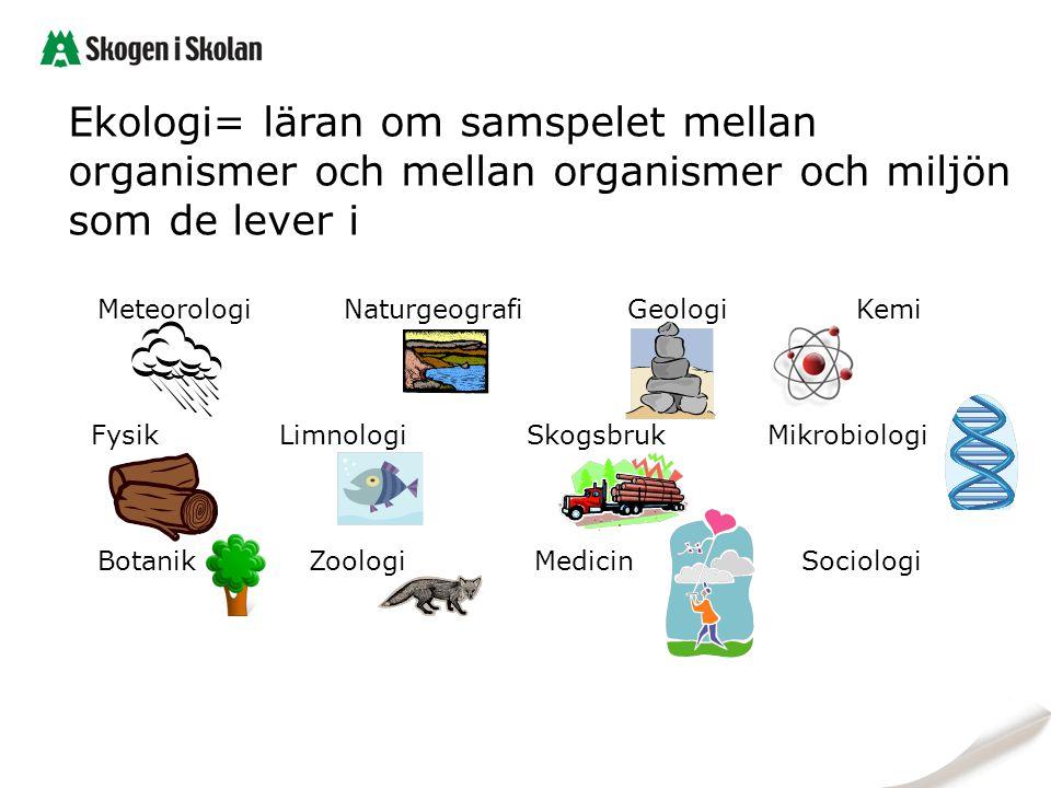 Ekologi= läran om samspelet mellan organismer och mellan organismer och miljön som de lever i Meteorologi Naturgeografi Geologi Kemi Fysik Limnologi S