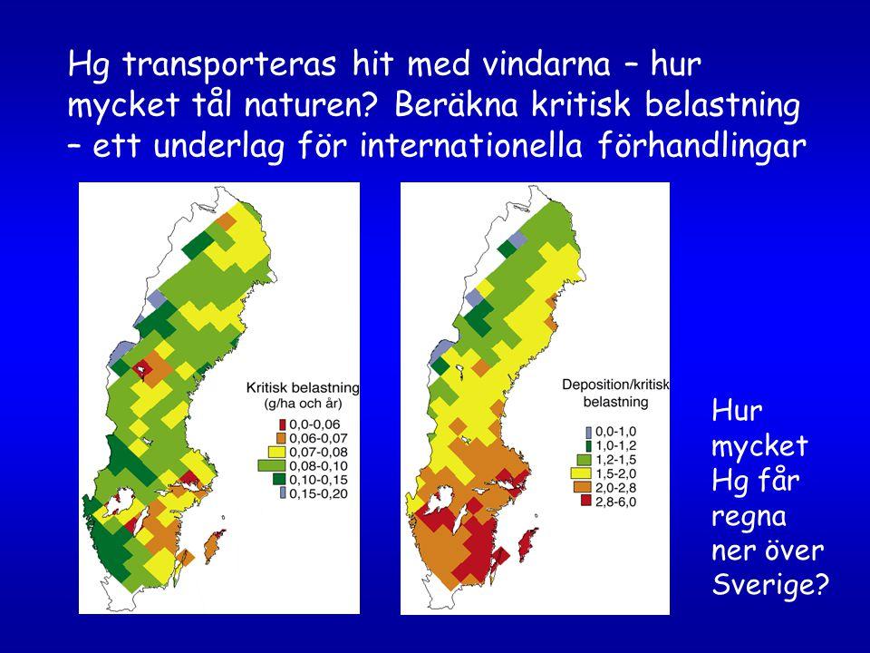 Hg transporteras hit med vindarna – hur mycket tål naturen? Beräkna kritisk belastning – ett underlag för internationella förhandlingar Hur mycket Hg