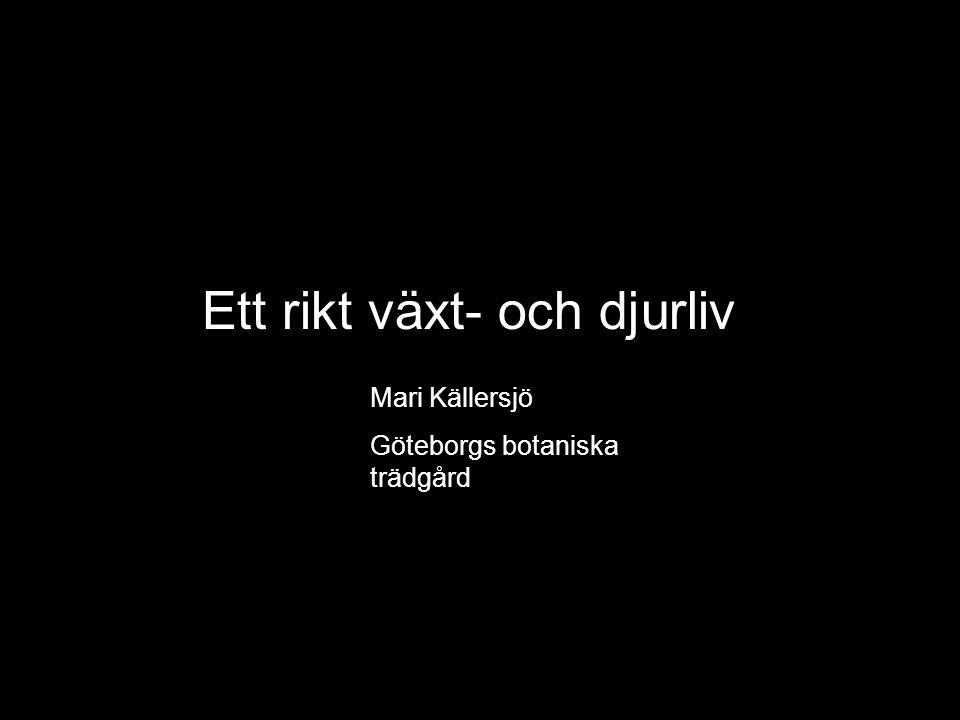 Ett rikt växt- och djurliv Mari Källersjö Göteborgs botaniska trädgård