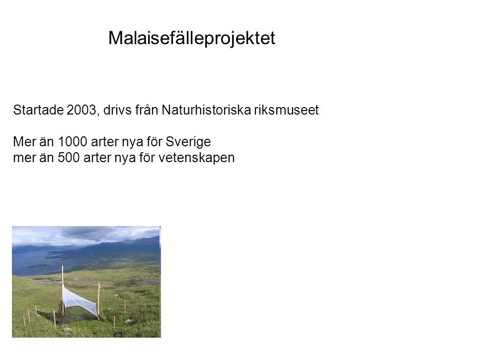 Malaisefälleprojektet Startade 2003, drivs från Naturhistoriska riksmuseet Mer än 1000 arter nya för Sverige mer än 500 arter nya för vetenskapen.