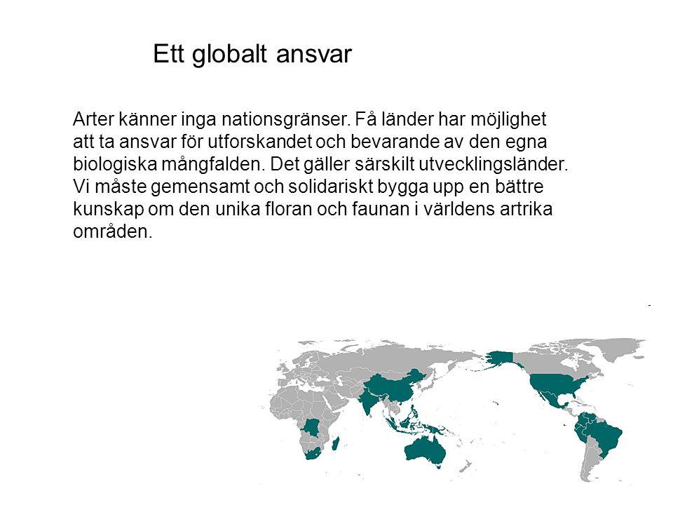 Ett globalt ansvar Arter känner inga nationsgränser.