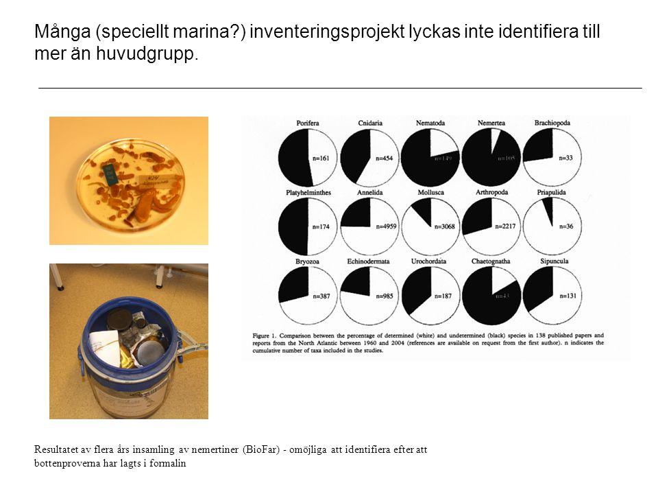 Många (speciellt marina?) inventeringsprojekt lyckas inte identifiera till mer än huvudgrupp.