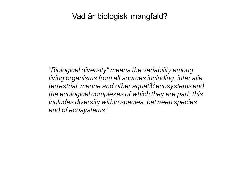 Vad är biologisk mångfald.