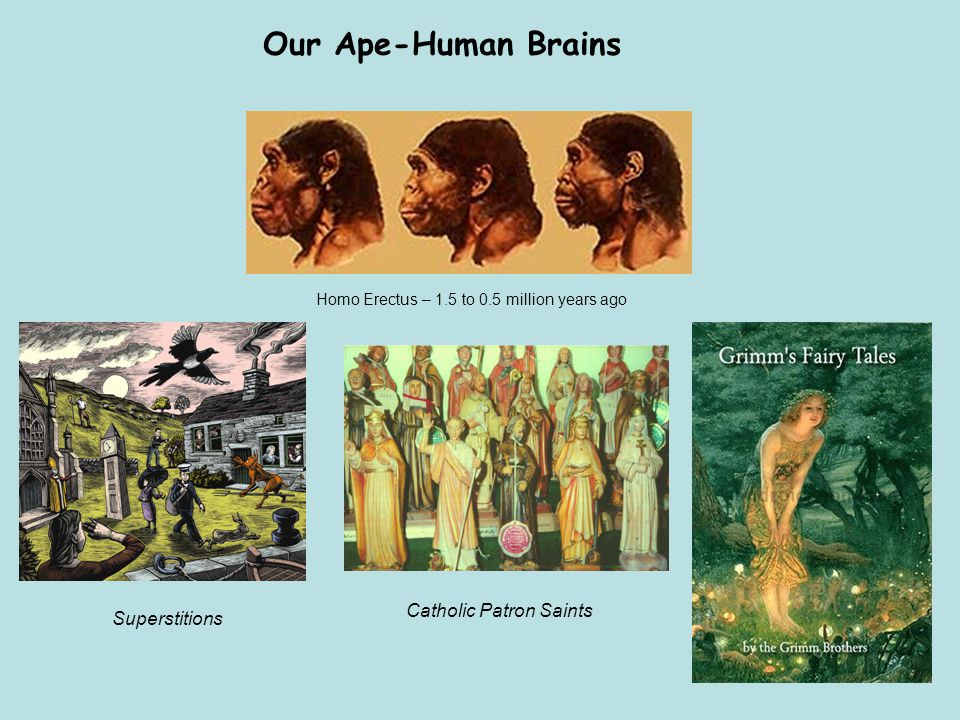 Our Ape-Human Brains Catholic Patron Saints Superstitions Homo Erectus – 1.5 to 0.5 million years ago