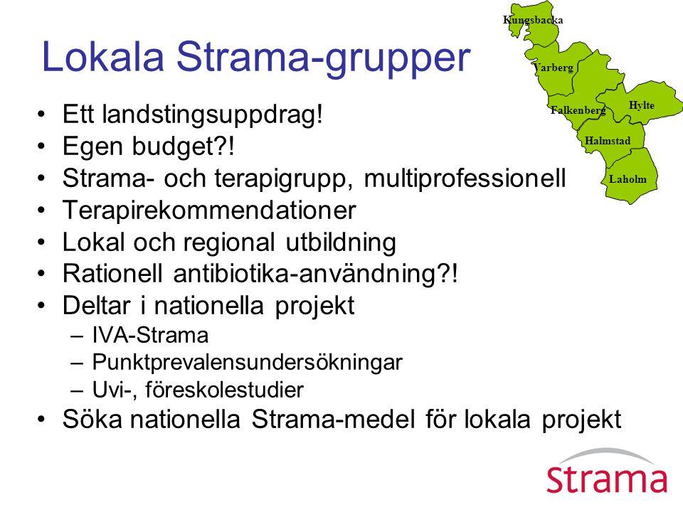Lokala Strama-grupper Ett landstingsuppdrag! Egen budget?! Strama- och terapigrupp, multiprofessionell Terapirekommendationer Lokal och regional utbil