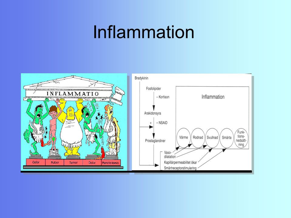 Kontraindikationer Ej till gravida Ej till astmatiker Ej till barn & ungdomar (under 18 år) med feber Överdosering: ändring av syra- basbalansen i kroppen