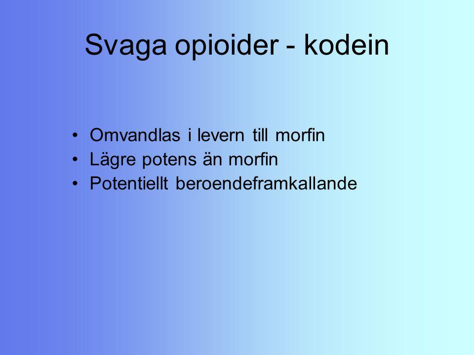 Svaga opioider - kodein Omvandlas i levern till morfin Lägre potens än morfin Potentiellt beroendeframkallande