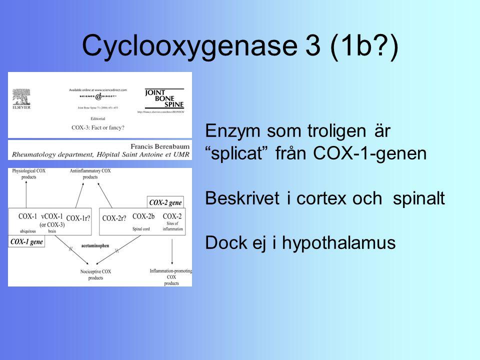 """Cyclooxygenase 3 (1b?) Enzym som troligen är """"splicat"""" från COX-1-genen Beskrivet i cortex och spinalt Dock ej i hypothalamus"""