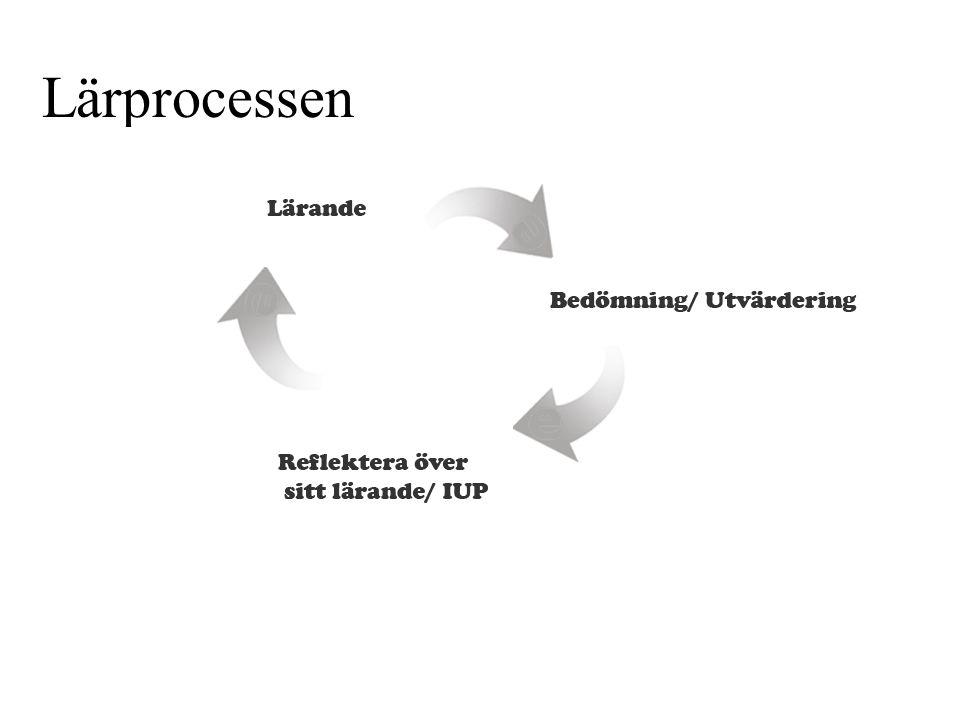 Lärprocessen