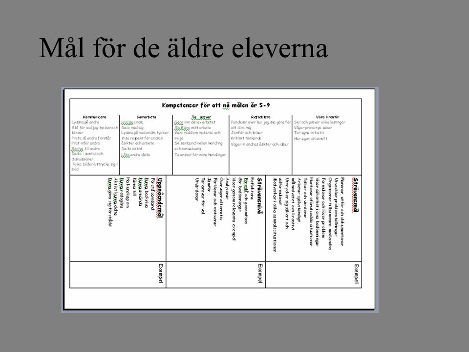 Mål i svenska Vi vill att eleverna ska kunna läsa barn-, ungdomsböcker och faktatexter anpassade efter ålder. Utdrag ur Stordammens arbetsplan