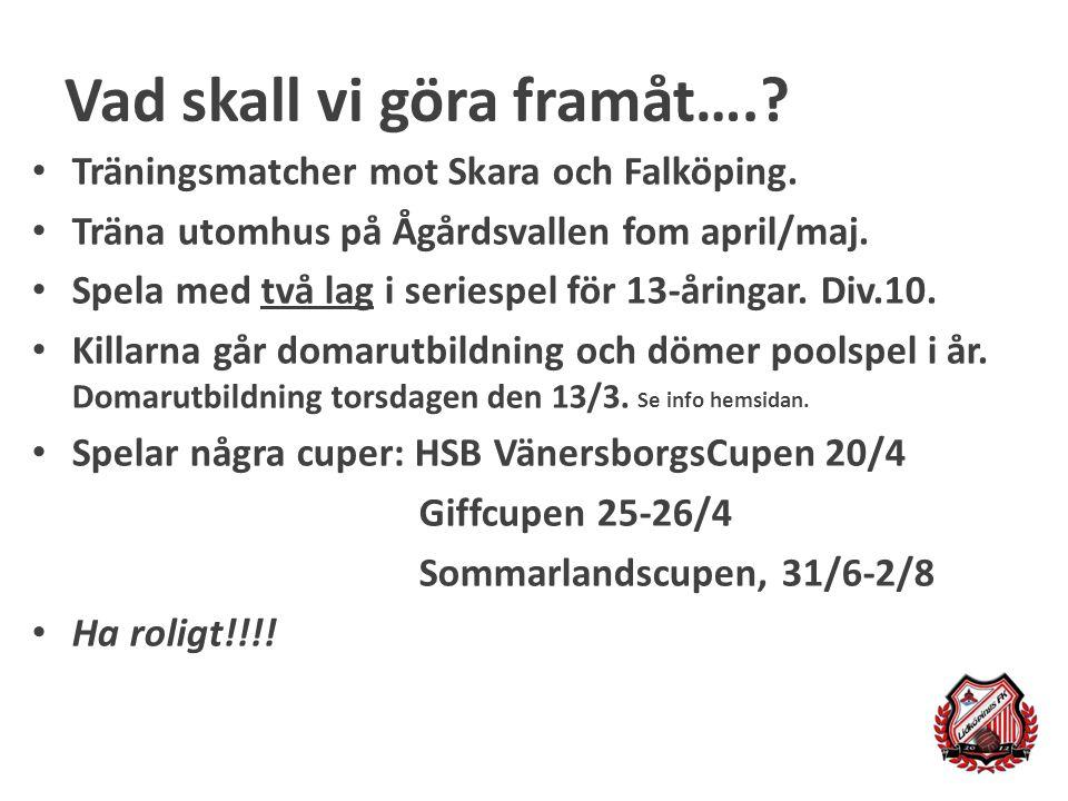 Vad skall vi göra framåt….? Träningsmatcher mot Skara och Falköping. Träna utomhus på Ågårdsvallen fom april/maj. Spela med två lag i seriespel för 13