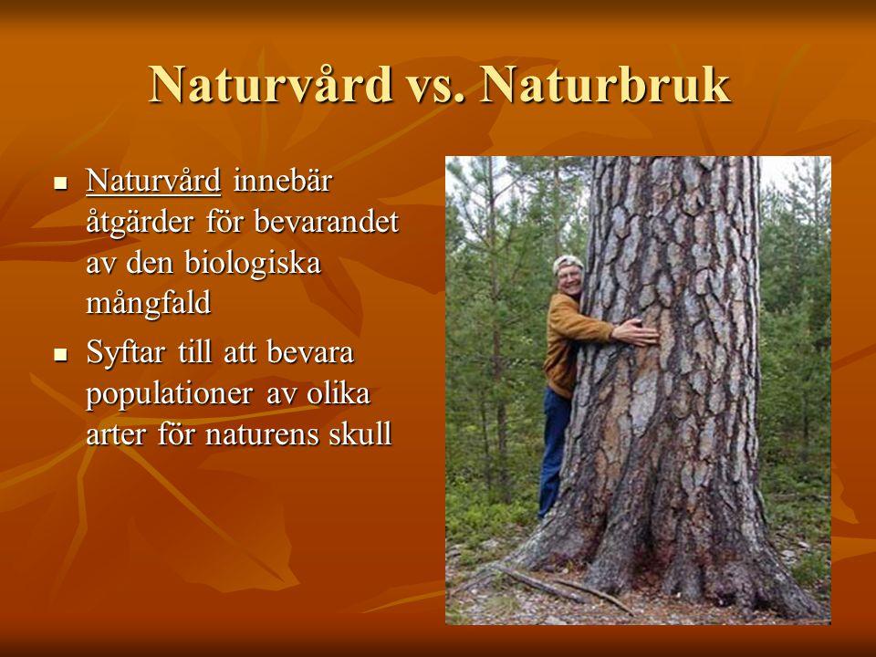Naturvård vs. Naturbruk Naturvård innebär åtgärder för bevarandet av den biologiska mångfald Naturvård innebär åtgärder för bevarandet av den biologis