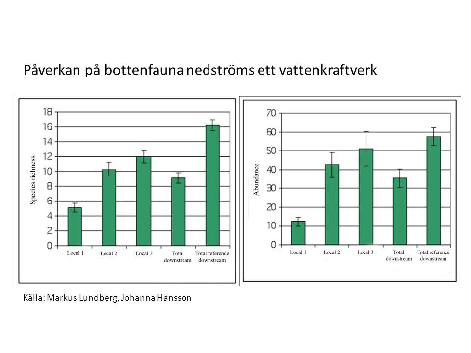 Källa: Markus Lundberg, Johanna Hansson Påverkan på bottenfauna nedströms ett vattenkraftverk