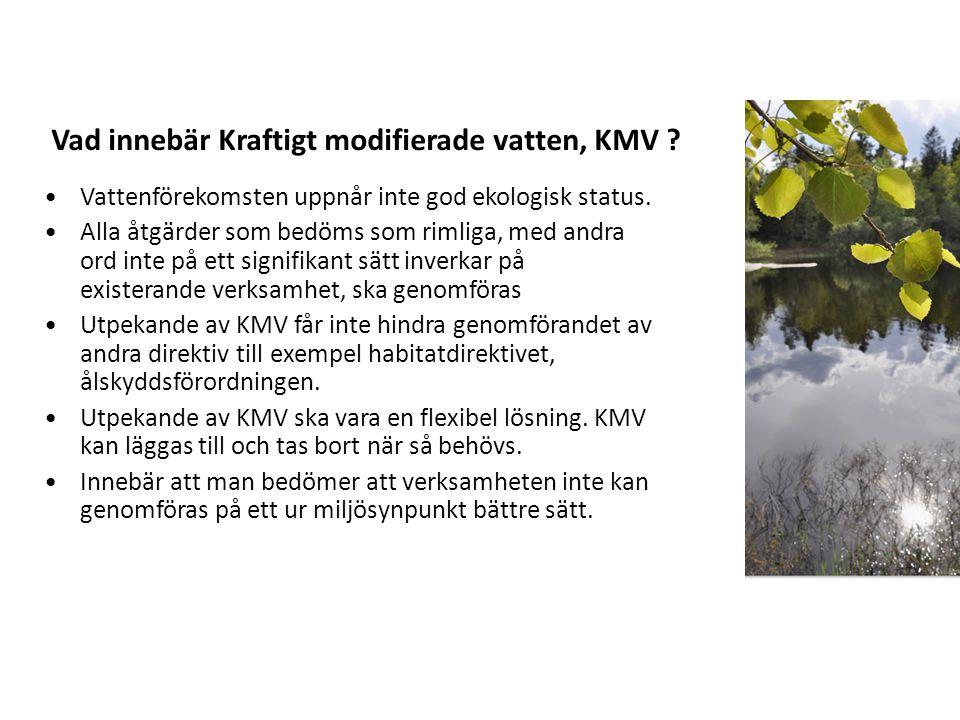 Vattenförekomsten uppnår inte god ekologisk status.