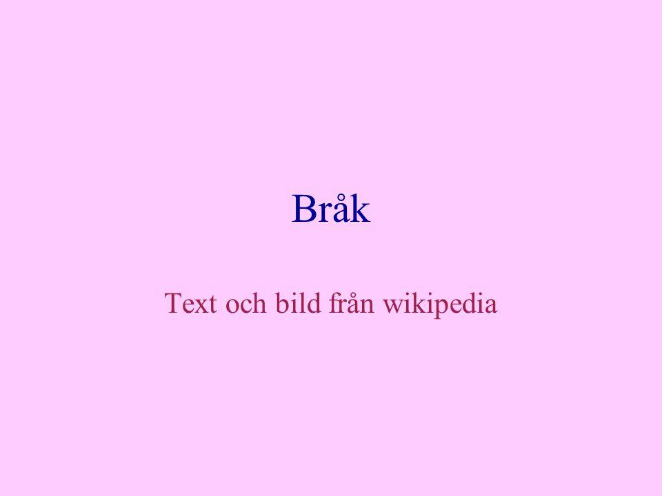 Bråk Text och bild från wikipedia