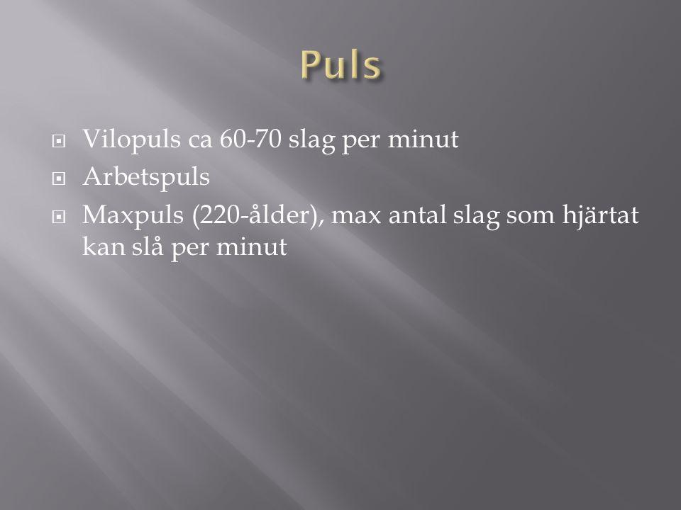  Vilopuls ca 60-70 slag per minut  Arbetspuls  Maxpuls (220-ålder), max antal slag som hjärtat kan slå per minut