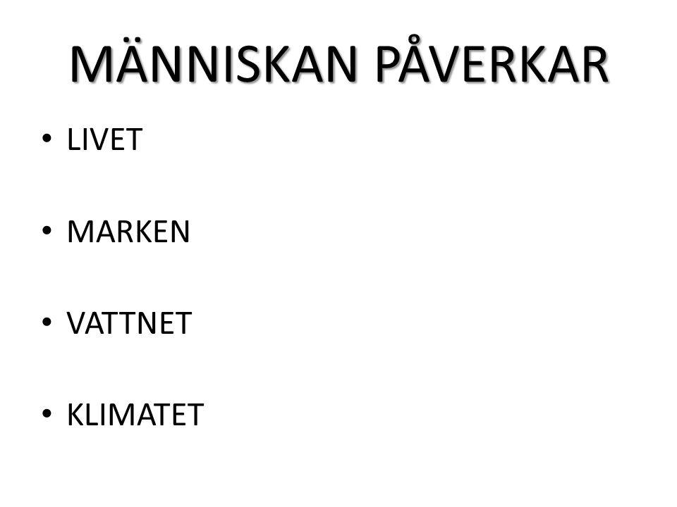 MÄNNISKAN PÅVERKAR LIVET MARKEN VATTNET KLIMATET