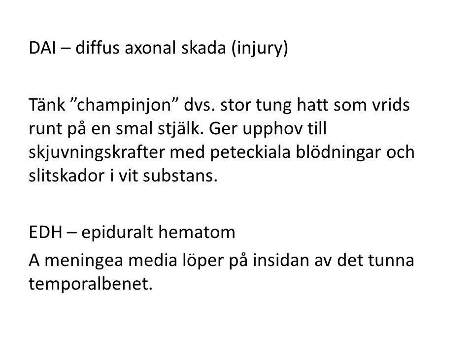DAI – diffus axonal skada (injury) Tänk champinjon dvs.