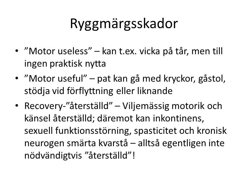 Ryggmärgsskador Motor useless – kan t.ex.