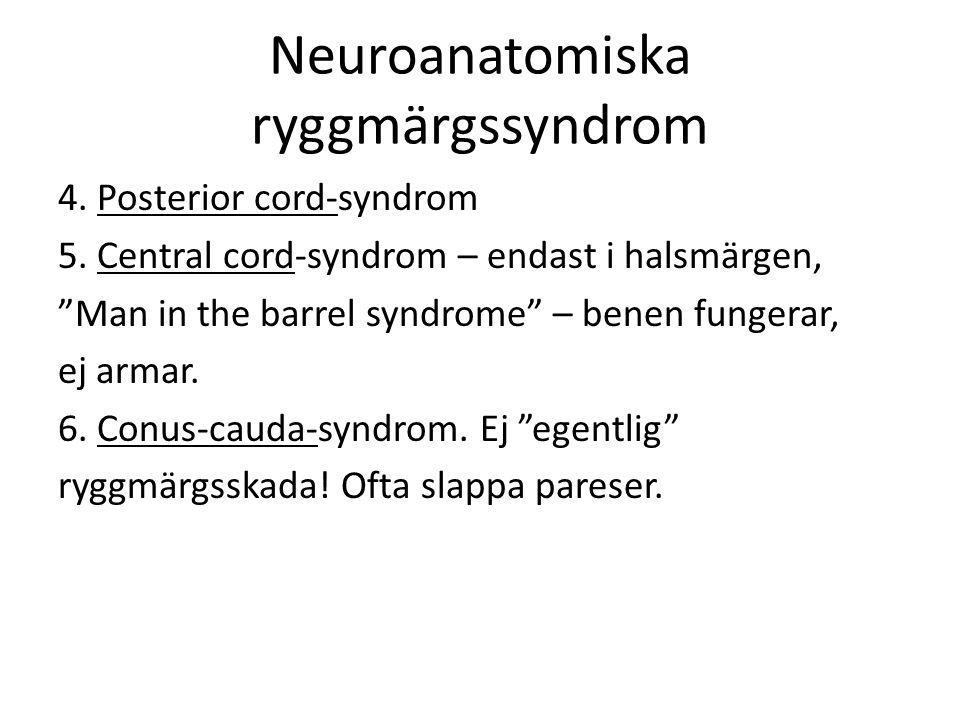 Neuroanatomiska ryggmärgssyndrom 4.Posterior cord-syndrom 5.