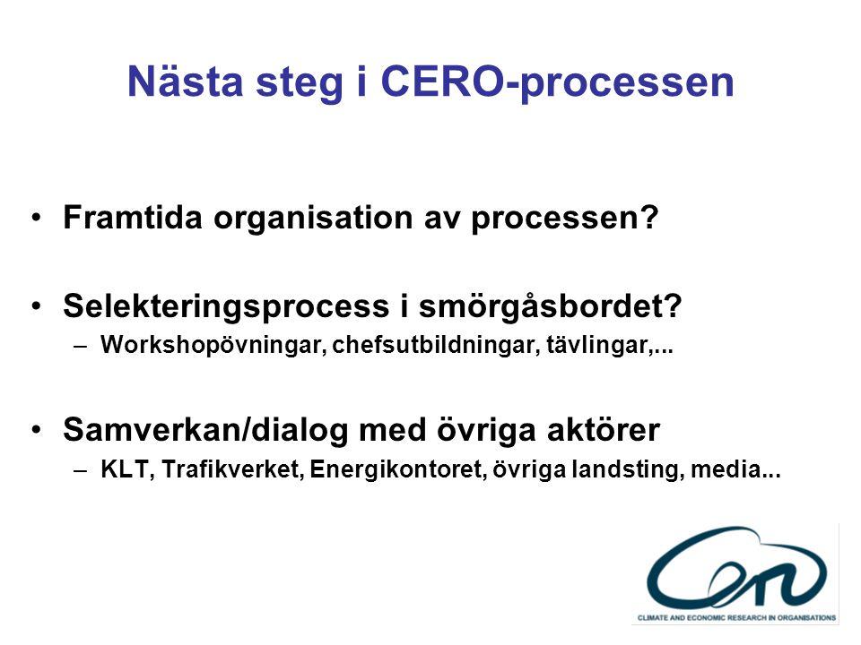 Nästa steg i CERO-processen Framtida organisation av processen.
