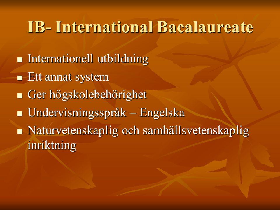 IB- International Bacalaureate Internationell utbildning Internationell utbildning Ett annat system Ett annat system Ger högskolebehörighet Ger högskolebehörighet Undervisningsspråk – Engelska Undervisningsspråk – Engelska Naturvetenskaplig och samhällsvetenskaplig inriktning Naturvetenskaplig och samhällsvetenskaplig inriktning