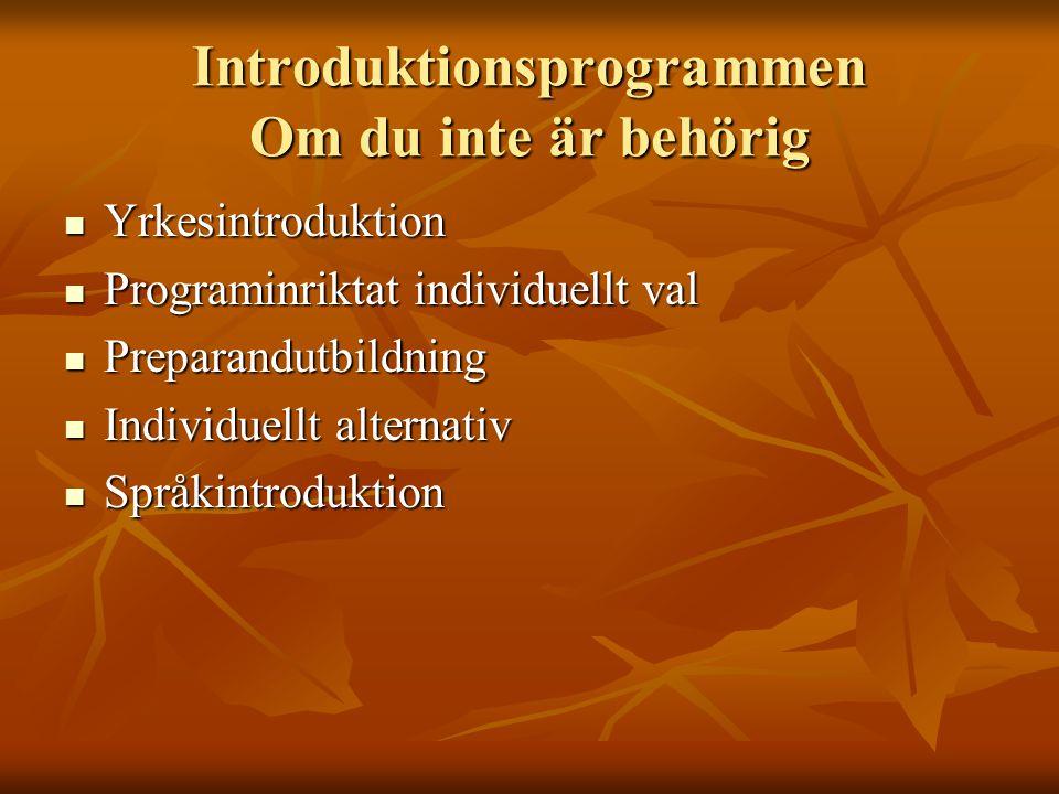 Introduktionsprogrammen Om du inte är behörig Yrkesintroduktion Yrkesintroduktion Programinriktat individuellt val Programinriktat individuellt val Preparandutbildning Preparandutbildning Individuellt alternativ Individuellt alternativ Språkintroduktion Språkintroduktion