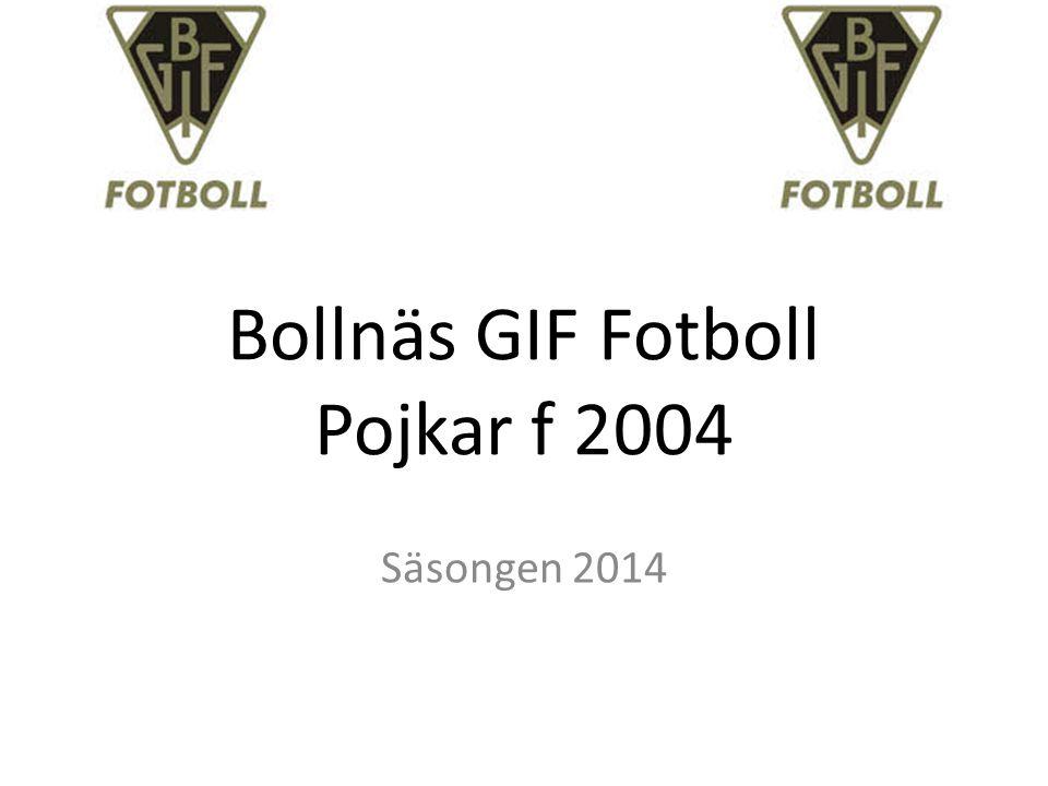 Bollnäs GIF Fotboll Pojkar f 2004 Säsongen 2014