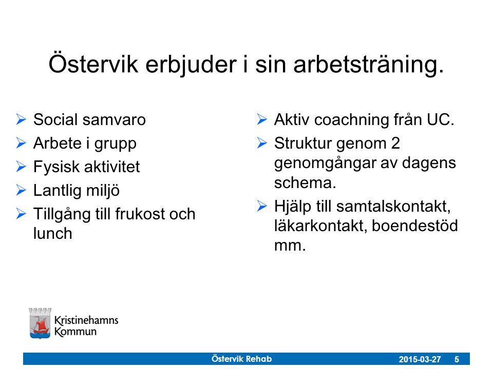 Östervik Rehab 2015-03-27 5 Östervik erbjuder i sin arbetsträning.  Social samvaro  Arbete i grupp  Fysisk aktivitet  Lantlig miljö  Tillgång til