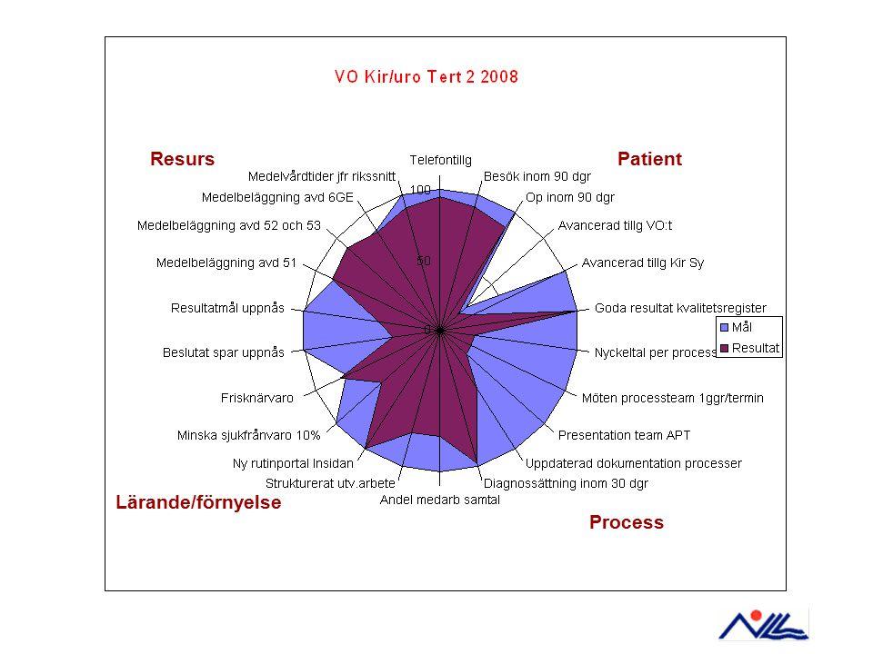 Patient Process Lärande/förnyelse Resurs