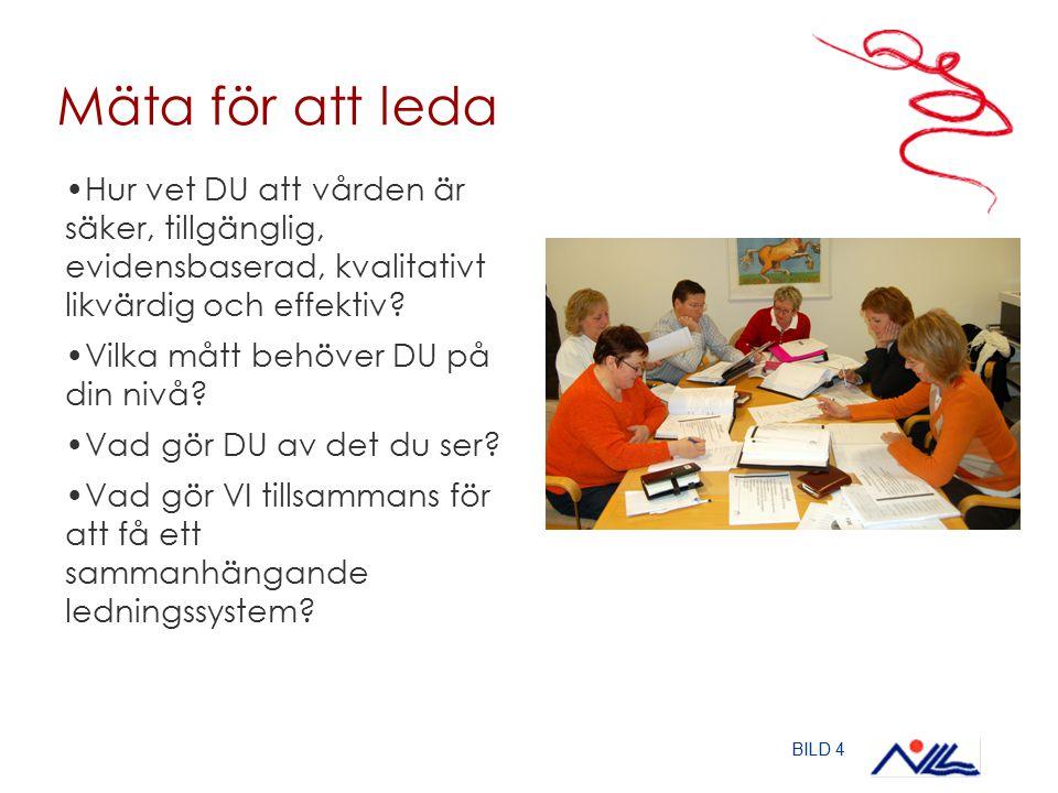 Utvecklingsarbete i regi av Qulturum – Jönköpings läns landsting Vi ville: Utarbeta sammanhängande system för ledning och styrning i division Opererande specialiteter som fungerar på alla nivåer Utveckla infrastruktur för mätningar i divisionen och på kliniknivå – hur allt hänger ihop Ta fram plan för spridning av resultat inom ramen för divisionens ledningsmodell till alla medarbetare