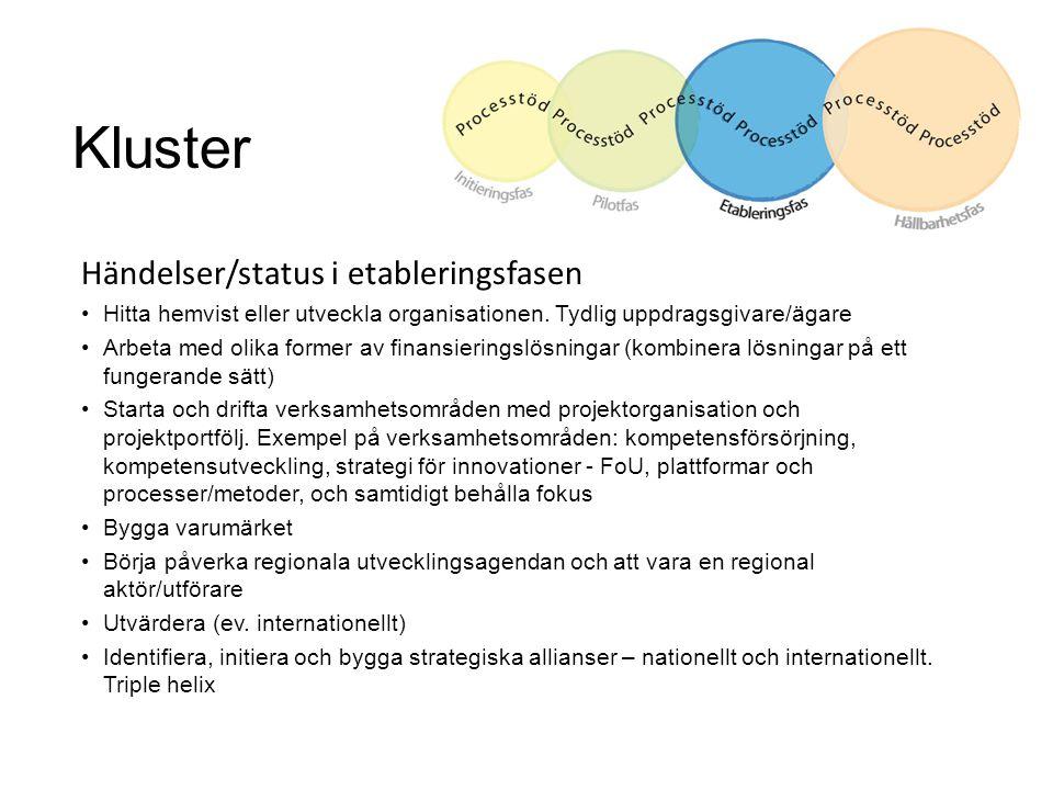 Kluster Händelser/status i etableringsfasen Hitta hemvist eller utveckla organisationen. Tydlig uppdragsgivare/ägare Arbeta med olika former av finans