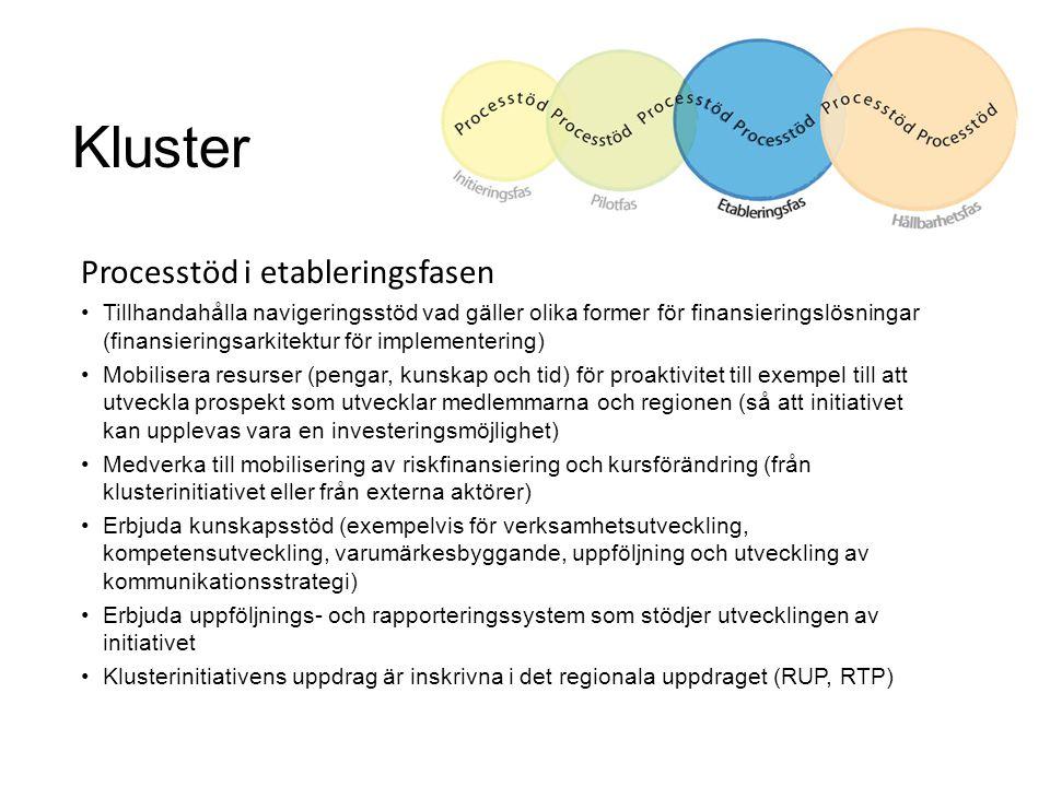 Kluster Processtöd i etableringsfasen Tillhandahålla navigeringsstöd vad gäller olika former för finansieringslösningar (finansieringsarkitektur för i