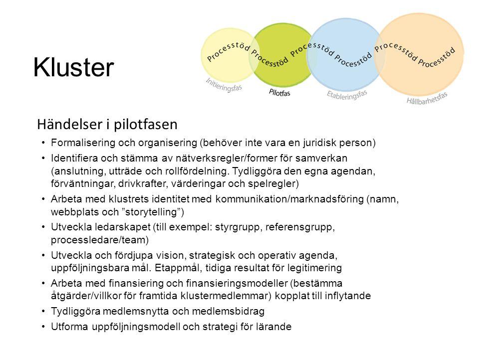 Kluster Händelser i pilotfasen Formalisering och organisering (behöver inte vara en juridisk person) Identifiera och stämma av nätverksregler/former f