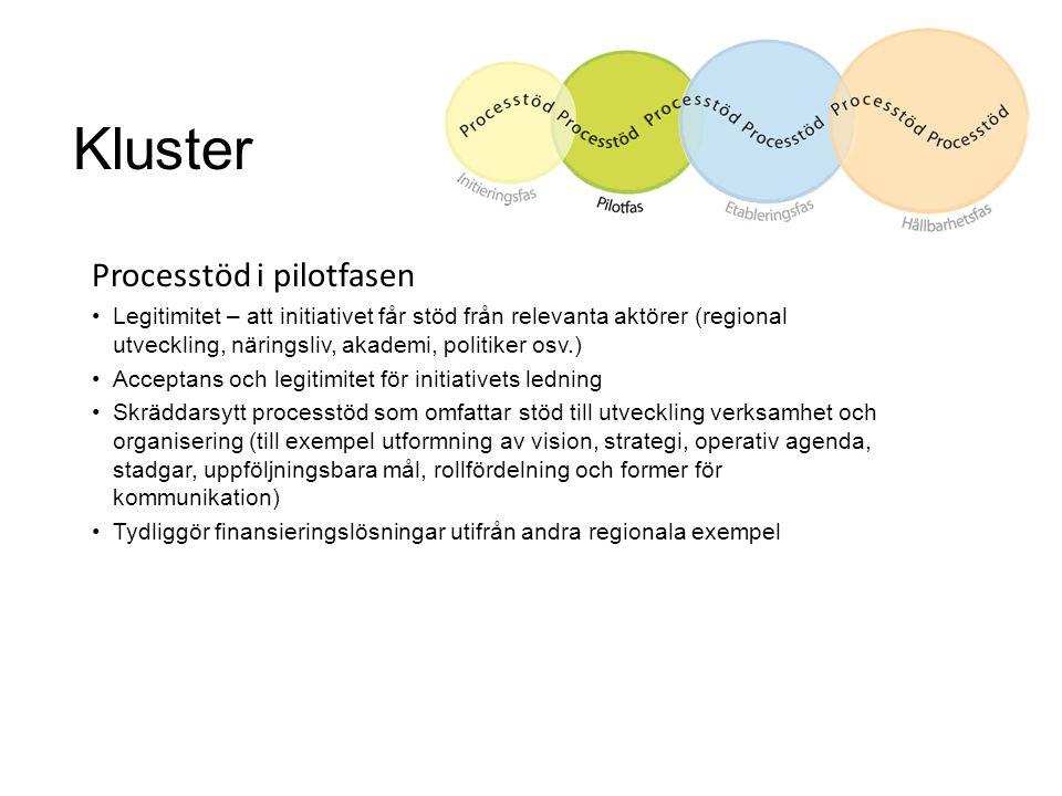 Kluster Processtöd i pilotfasen Legitimitet – att initiativet får stöd från relevanta aktörer (regional utveckling, näringsliv, akademi, politiker osv