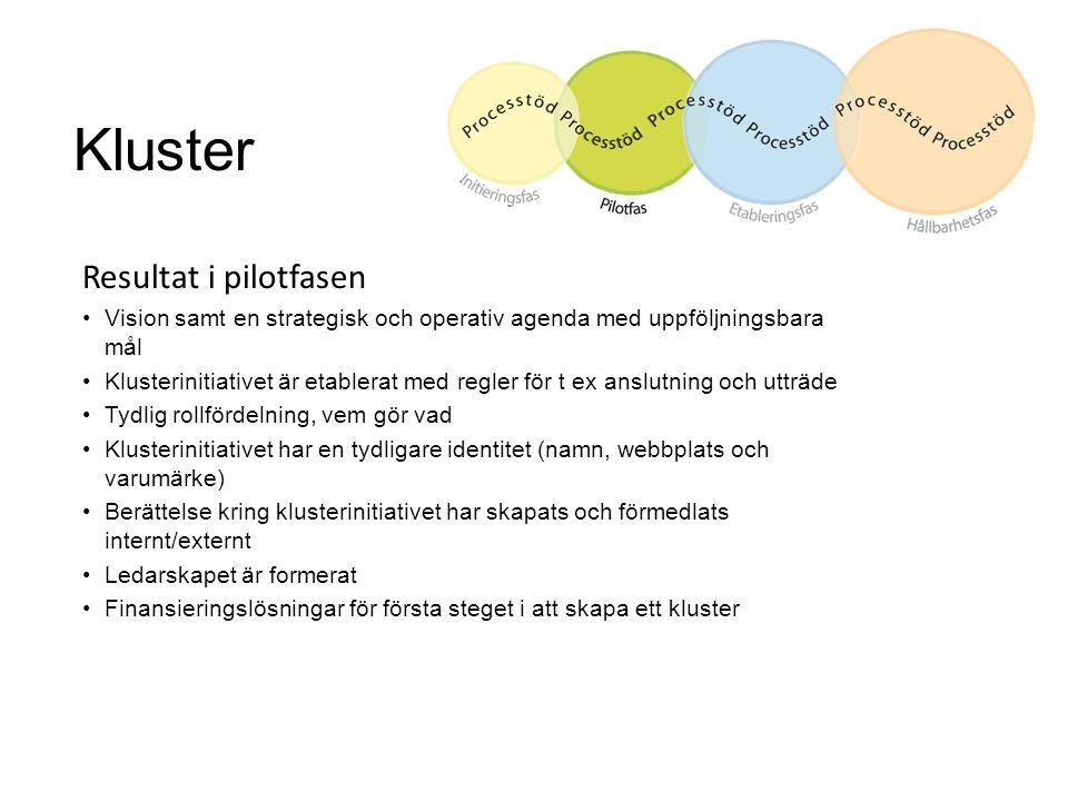 Kluster Resultat i pilotfasen Vision samt en strategisk och operativ agenda med uppföljningsbara mål Klusterinitiativet är etablerat med regler för t