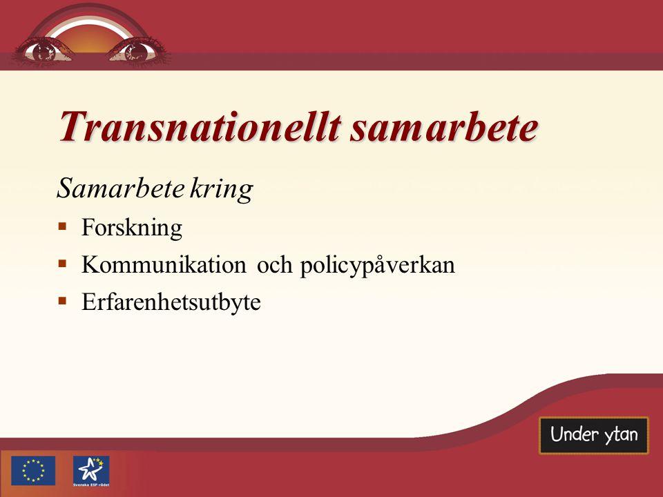 Transnationellt samarbete Samarbete kring  Forskning  Kommunikation och policypåverkan  Erfarenhetsutbyte