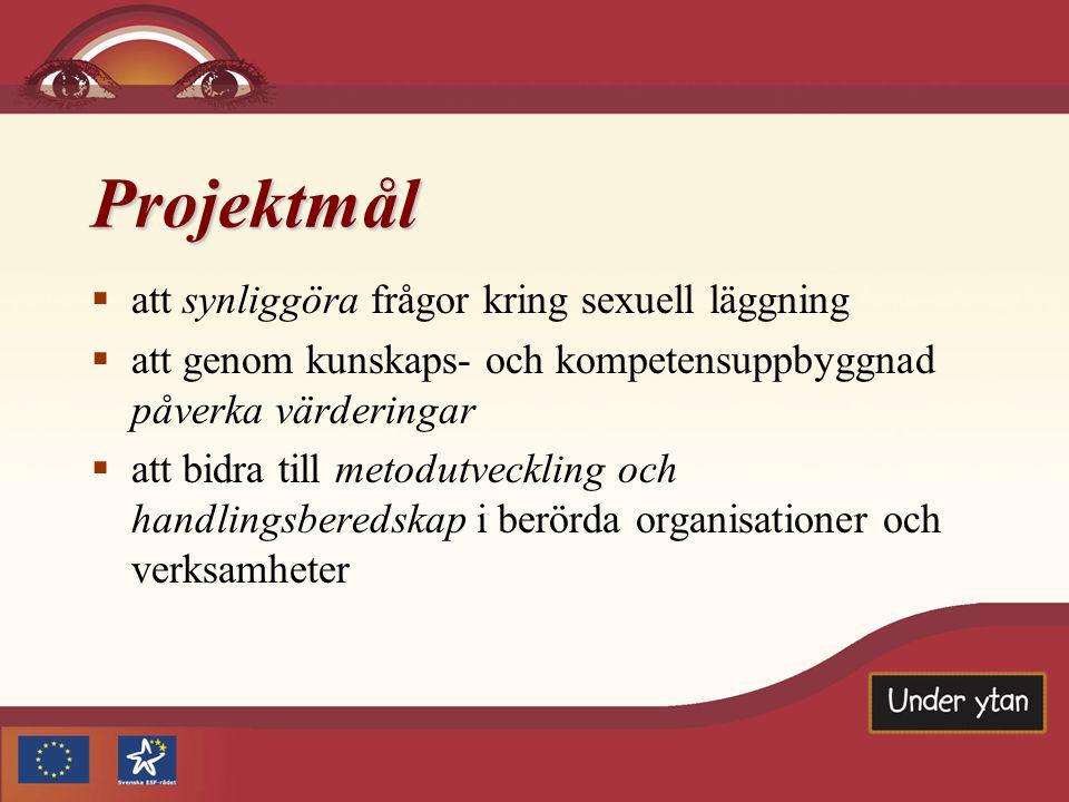 Projektmål  att synliggöra frågor kring sexuell läggning  att genom kunskaps- och kompetensuppbyggnad påverka värderingar  att bidra till metodutveckling och handlingsberedskap i berörda organisationer och verksamheter