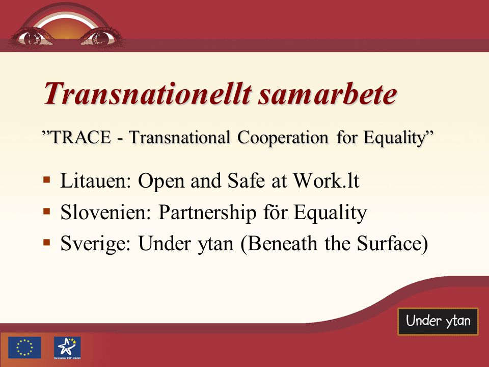Transnationellt samarbete TRACE - Transnational Cooperation for Equality  Litauen: Open and Safe at Work.lt  Slovenien: Partnership för Equality  Sverige: Under ytan (Beneath the Surface)