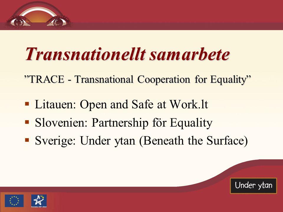 Transnationellt samarbete TRACE - Transnational Cooperation for Equality  Litauen: Open and Safe at Work.lt  Slovenien: Partnership för Equality  Sverige: Under ytan (Beneath the Surface)