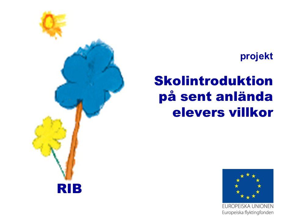 projekt Skolintroduktion på sent anlända elevers villkor RIB